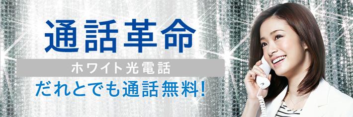 SoftBank光「ホワイト光電話」
